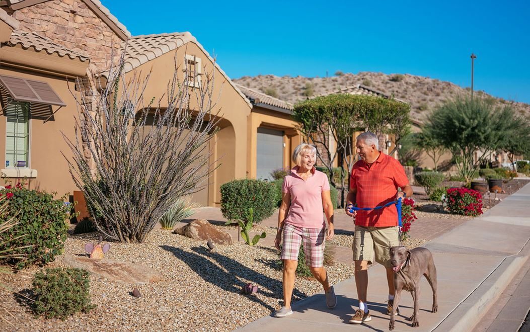 Couple walking dog on sidewalk with house in background in Estrella community