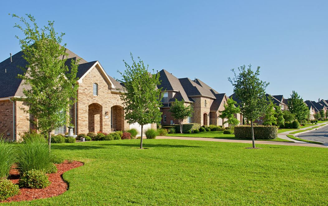 Row of stone homes with grass yards in Teravista